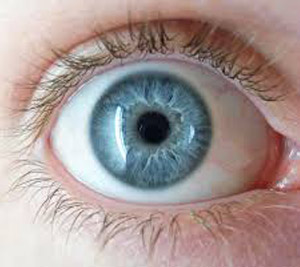 Iris Recognition On Smartphones