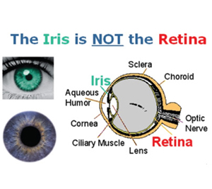 iris vs retinal scanning is there a difference