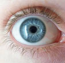iris recognition for patient ID in healthcare is a more accurate and secure way to identify patients